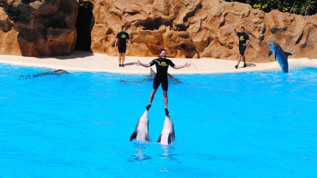 US Loro Parque Tenerife7