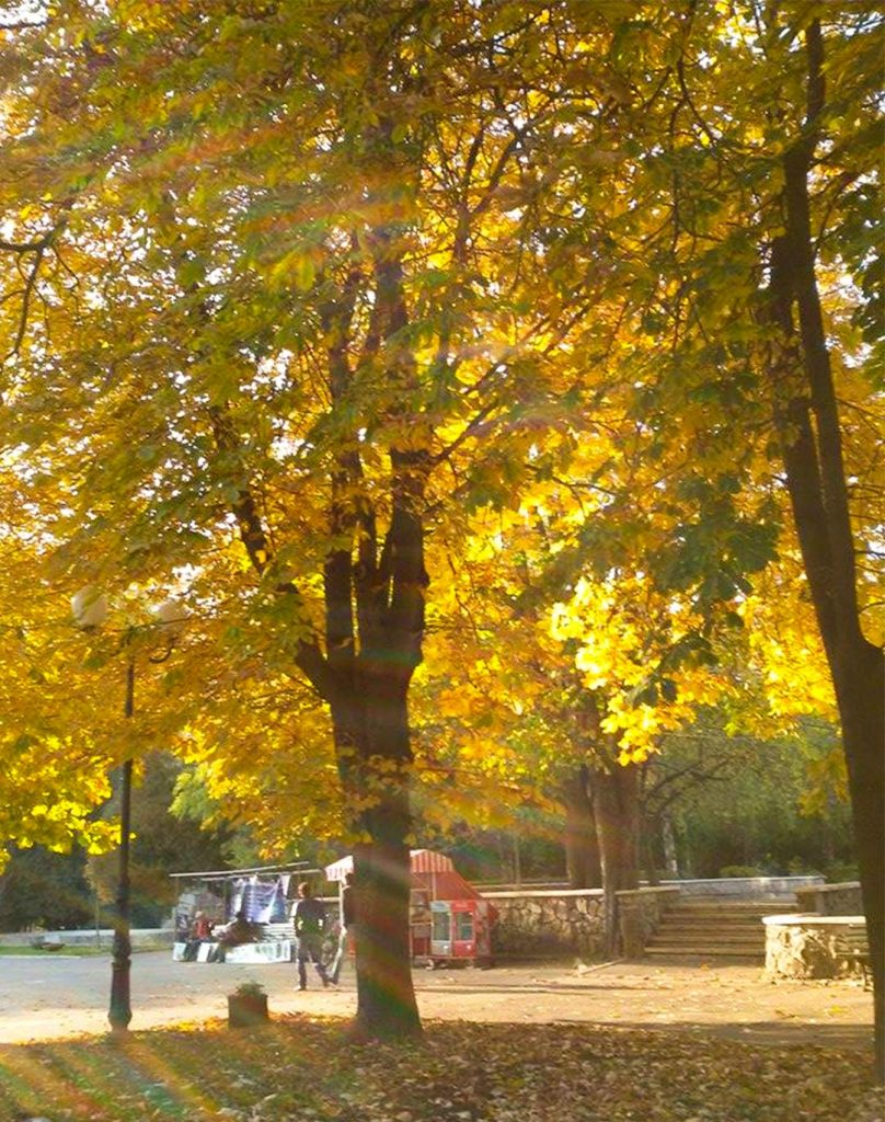 EN Autumn Landscape Otilia Andries 1