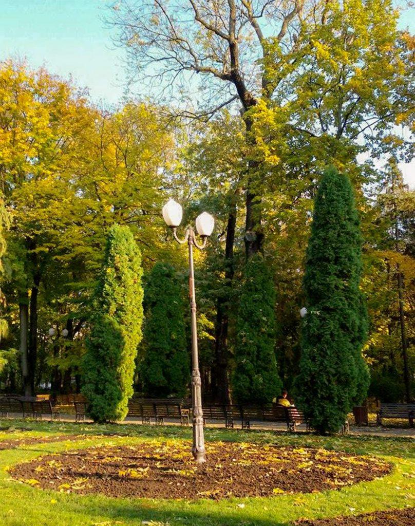EN Autumn Landscape Otilia Andries 12