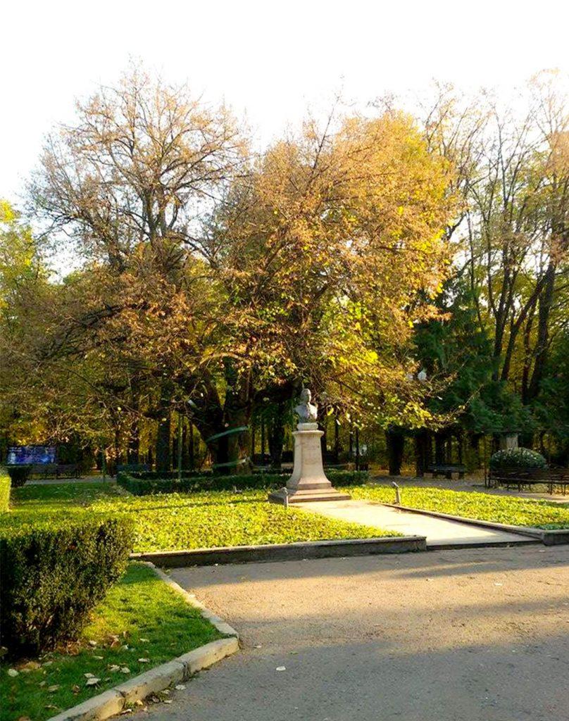 EN Autumn Landscape Otilia Andries 5