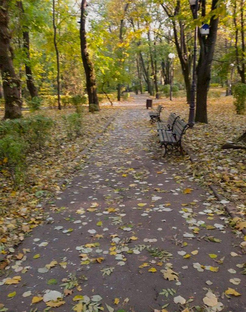 EN Autumn Landscape Otilia Andries 8