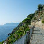 Cliff on the rocks of the city Riomaggiore, Cinque Terre, La Spezia, Italy